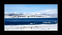 Mono Lake in winter